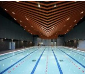 兒童游泳班(青衣游泳池)傲洋游泳會