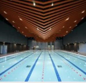 兒童游泳班(青衣西南游泳池)傲洋游泳會