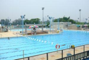 九龍仔游泳池 傲洋游泳會 兒童游泳班