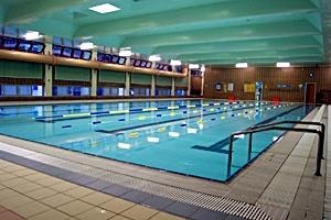 摩理臣山游泳池 傲洋游泳池 兒童游泳班